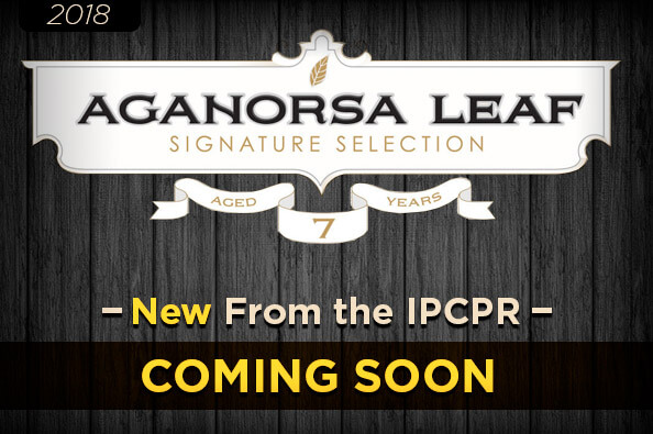 Aganorsa Leaf Signature Selection To Feature Medio Tiempo
